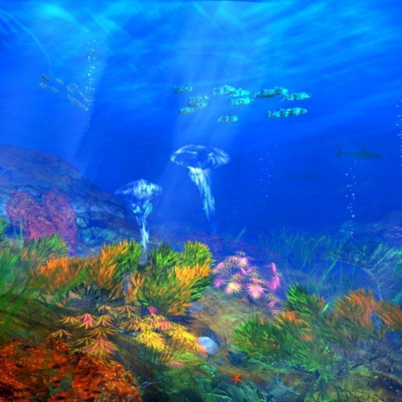 10 Best Under The Sea Wallpaper FULL HD 1920×1080 For PC Desktop 2018 free download download the free under sea wallpaper turtle pinterest sea 800x800