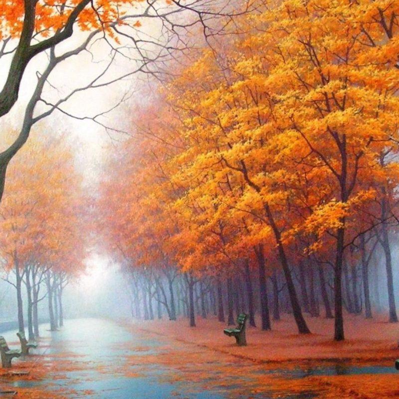 10 Most Popular Autumn Wallpaper Hd 1920X1080 FULL HD 1080p For PC Desktop 2018 free download download wallpaper 1920x1080 autumn park avenue benches trees 800x800
