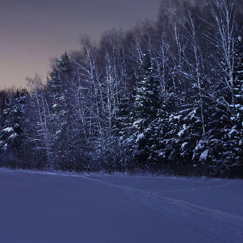 10 Top Snow At Night Wallpaper FULL HD 1920×1080 For PC Desktop 2021 free download download wallpaper 1920x1080 field trees snow winter night full 800x800