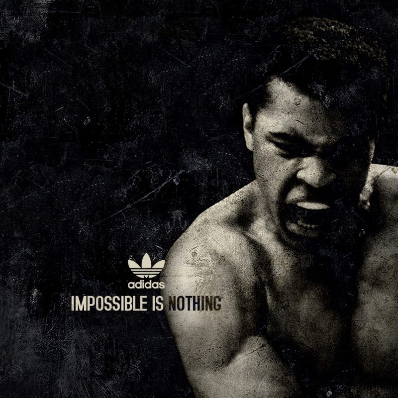10 Top Muhammad Ali Wallpaper 1920X1080 FULL HD 1920×1080 For PC Desktop 2018 free download download wallpaper 1920x1080 muhammad ali boxer sports adidas 800x800