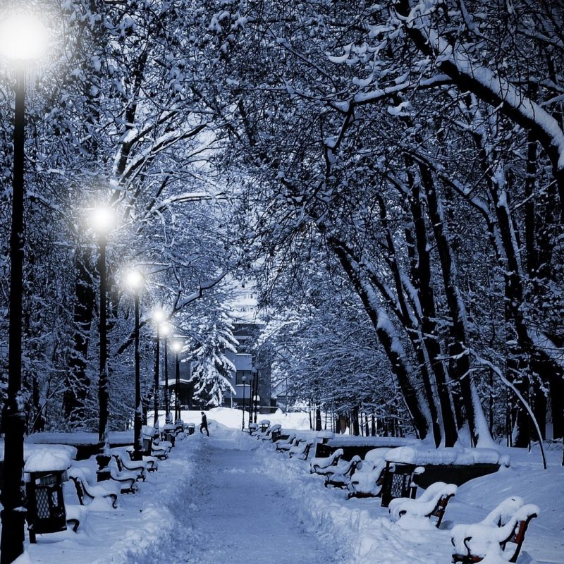 10 Latest Snow Hd Wallpapers 1080P FULL HD 1920×1080 For PC Background 2018 free download download wallpaper 1920x1080 park winter twilight lamps light 800x800