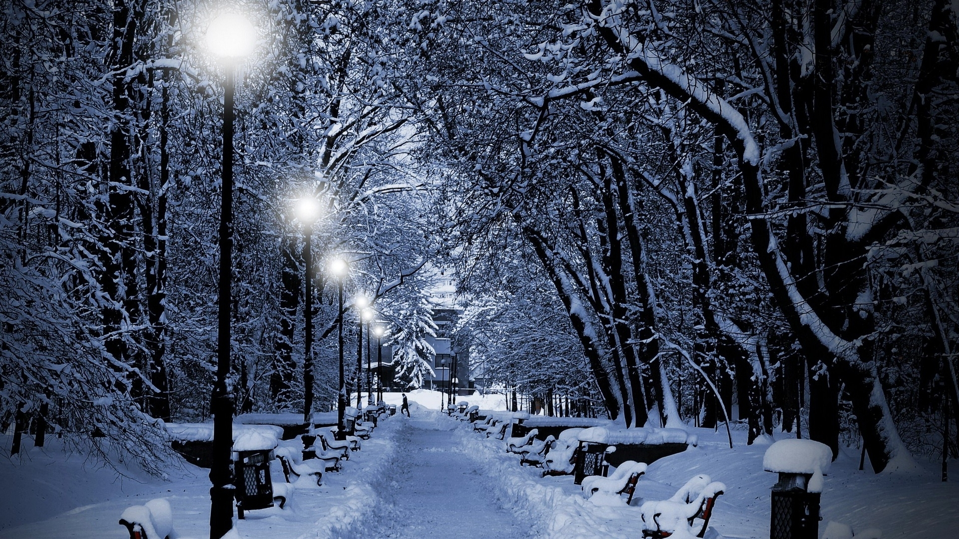 download wallpaper 1920x1080 park, winter, twilight, lamps, light