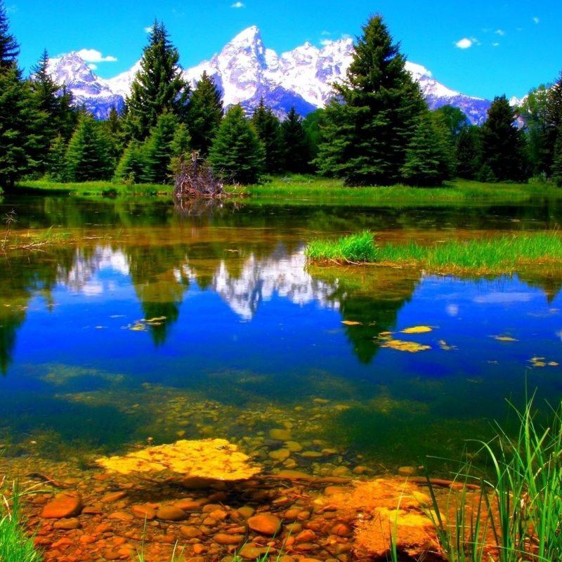 10 Best 1920X1080 Wallpaper Hd Landscape FULL HD 1920×1080 For PC Desktop 2020 free download download wallpaper 1920x1080 vegetation lake green landscape full 1 800x800