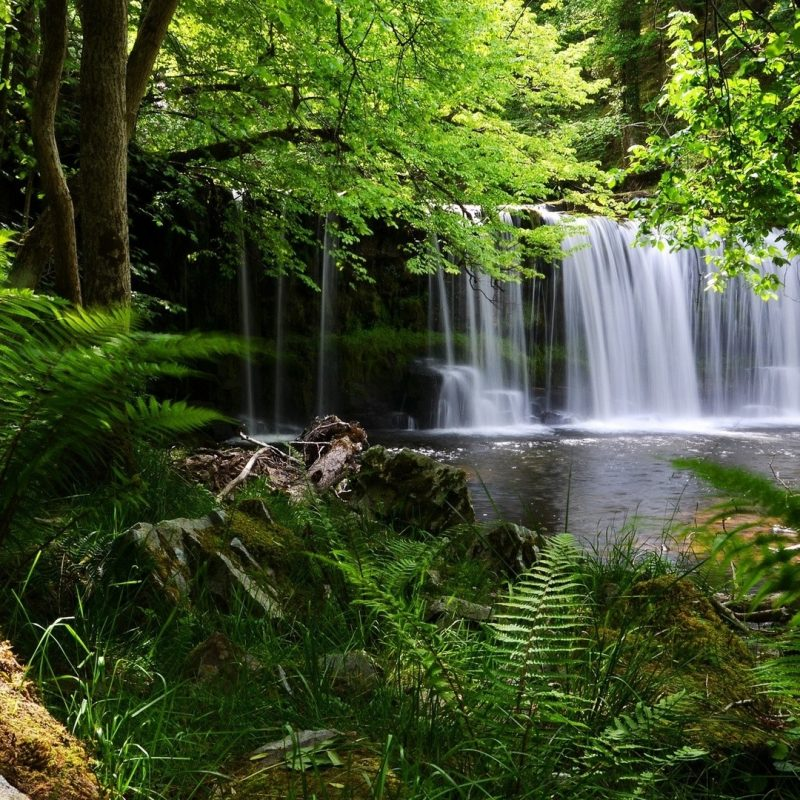 10 Most Popular Waterfall Hd Wallpapers 1080P FULL HD 1920×1080 For PC Background 2018 free download download wallpaper 1920x1080 waterfall grass nature shadow full 800x800