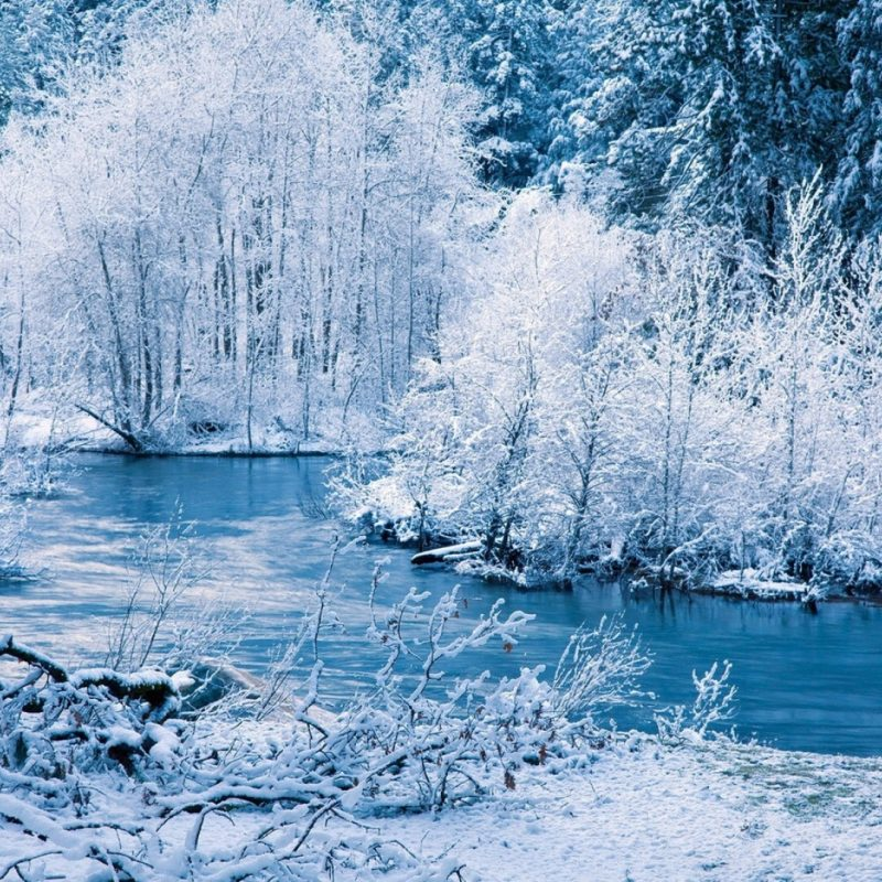 10 Latest Snow Hd Wallpapers 1080P FULL HD 1920×1080 For PC Background 2018 free download download wallpaper 1920x1080 winter river snow trees landscape 800x800