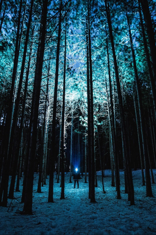 10 Most Popular Night Forest Wallpaper FULL HD 1920×1080 For PC Desktop 2020 free download download wallpaper 800x1200 man night forest light trees iphone 533x800