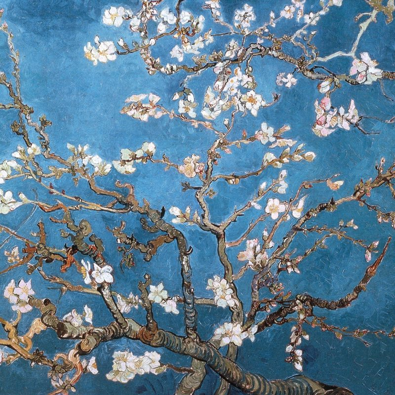 10 Latest Van Gogh Desktop Wallpaper FULL HD 1080p For PC Background 2018 free download download wallpapers download 2560x1600 blossoms vincent van gogh 1 800x800