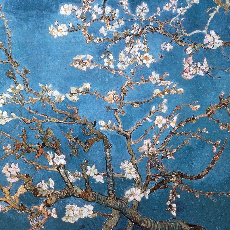 10 Best Van Gogh Hd Wallpaper FULL HD 1080p For PC Desktop 2018 free download download wallpapers download 2560x1600 blossoms vincent van gogh 800x800