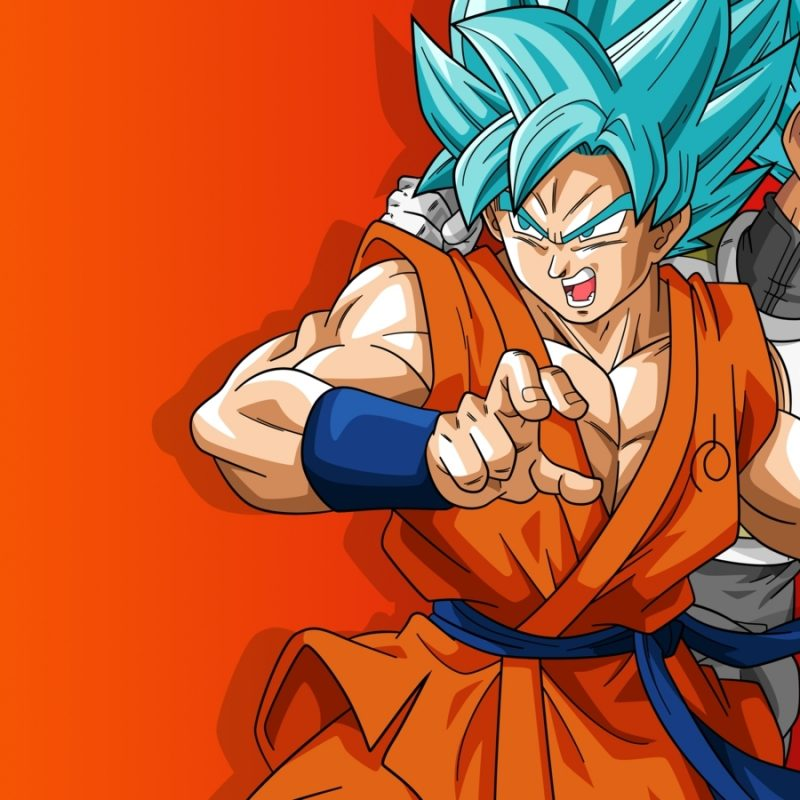 10 Most Popular Wallpapers Of Dragonball Z FULL HD 1080p For PC Background 2018 free download dragon ball wallpaper 24 800x800