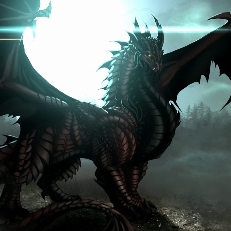 10 Latest Dragon Wallpaper Hd 1920X1080 FULL HD 1920×1080 For PC Background 2021 free download dragon wallpaper 37 the 50 best dragon wallpapers 800x800