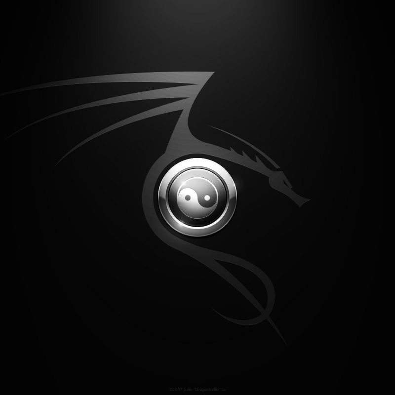 10 Latest Dragon Yin Yang Wallpaper FULL HD 1920×1080 For PC Background 2018 free download dragon yin yang wallpaper 51 images 800x800