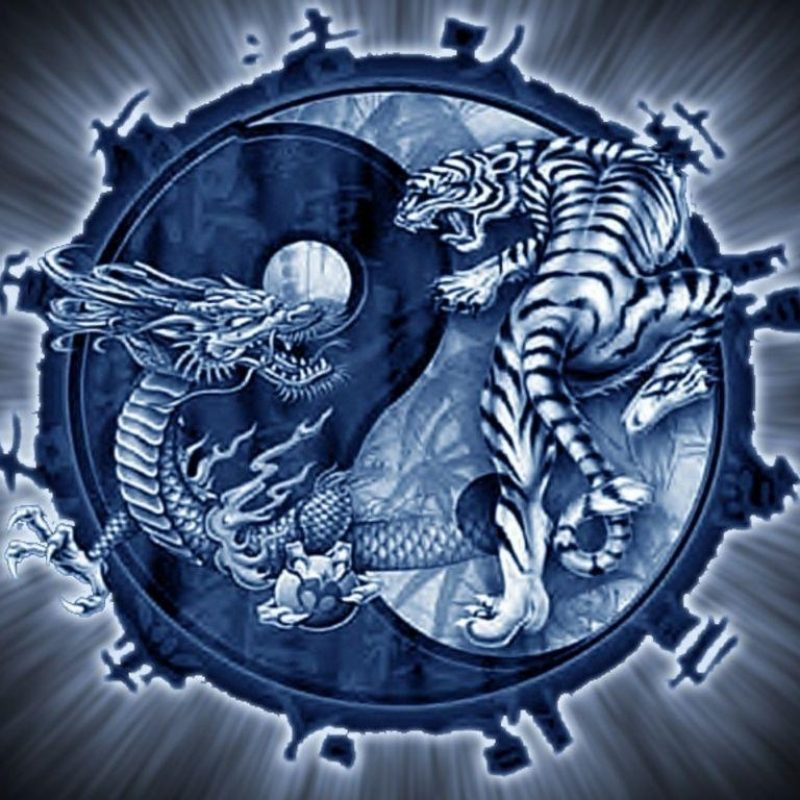 10 Latest Dragon Yin Yang Wallpaper FULL HD 1920×1080 For PC Background 2018 free download dragon yin yang wallpapers wallpaper cave 800x800