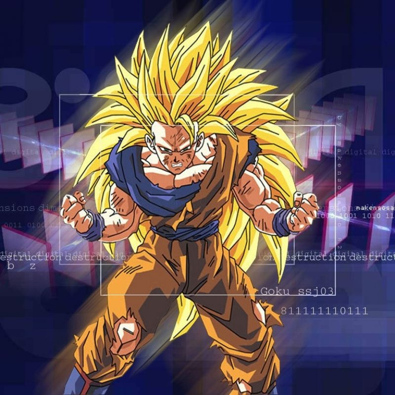 10 New Goku Super Saiyan 3 Wallpaper FULL HD 1080p For PC Background 2018 free download dragonball z movie characters images goku super saiyan 3 wallpaper 2 800x800