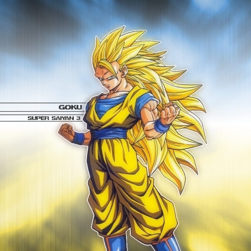 10 New Goku Super Saiyan 3 Wallpaper FULL HD 1080p For PC Background 2018 free download dragonball z movie characters images goku super saiyan 3 wallpaper 3 800x800