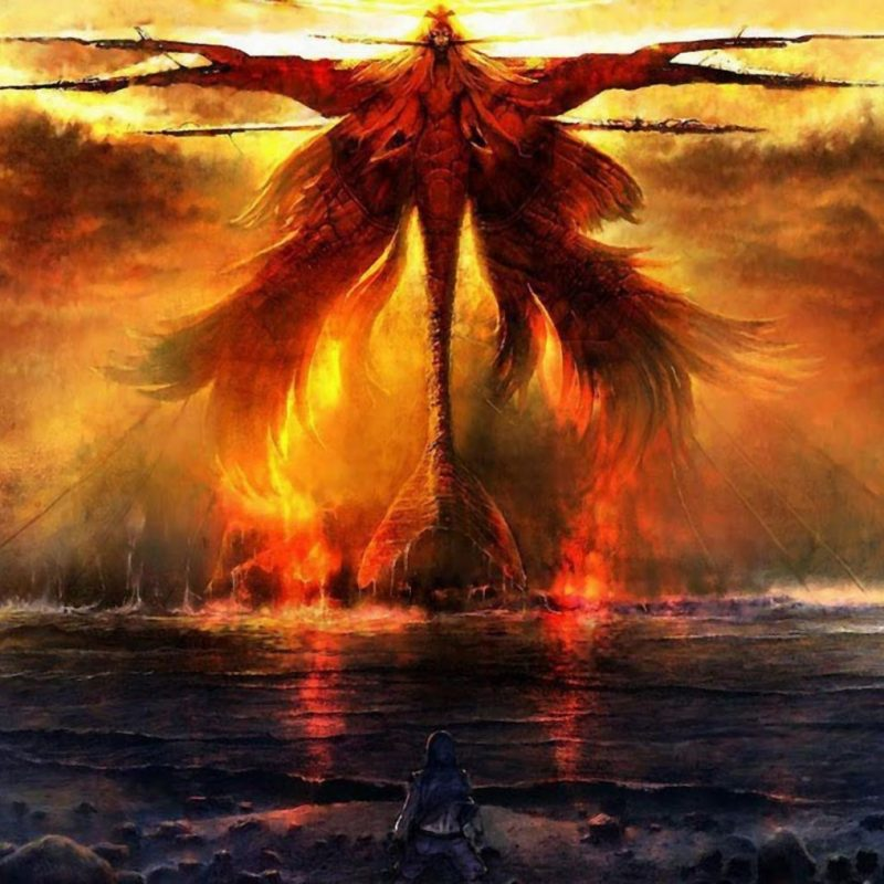 10 New Phoenix Rising From The Ashes Wallpaper FULL HD 1080p For PC Background 2018 free download dragons and phoenix rising from ashes wallpapers wallpaper cave 800x800