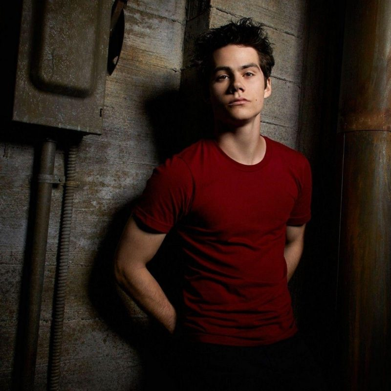 10 New Dylan O Brien Wallpaper FULL HD 1920×1080 For PC Background 2018 free download dylan obrien wallpapers wallpaper cave 800x800