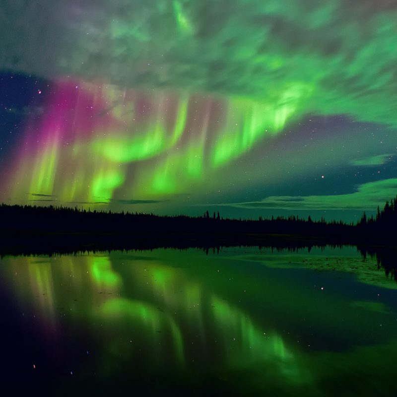 10 Latest Aurora Borealis Wallpaper Hd 1600X900 FULL HD 1080p For PC Desktop 2018 free download e29ca7e383bbaurora borealee383bbe29ca7e383bb aurora borealis pinterest aurora 800x800