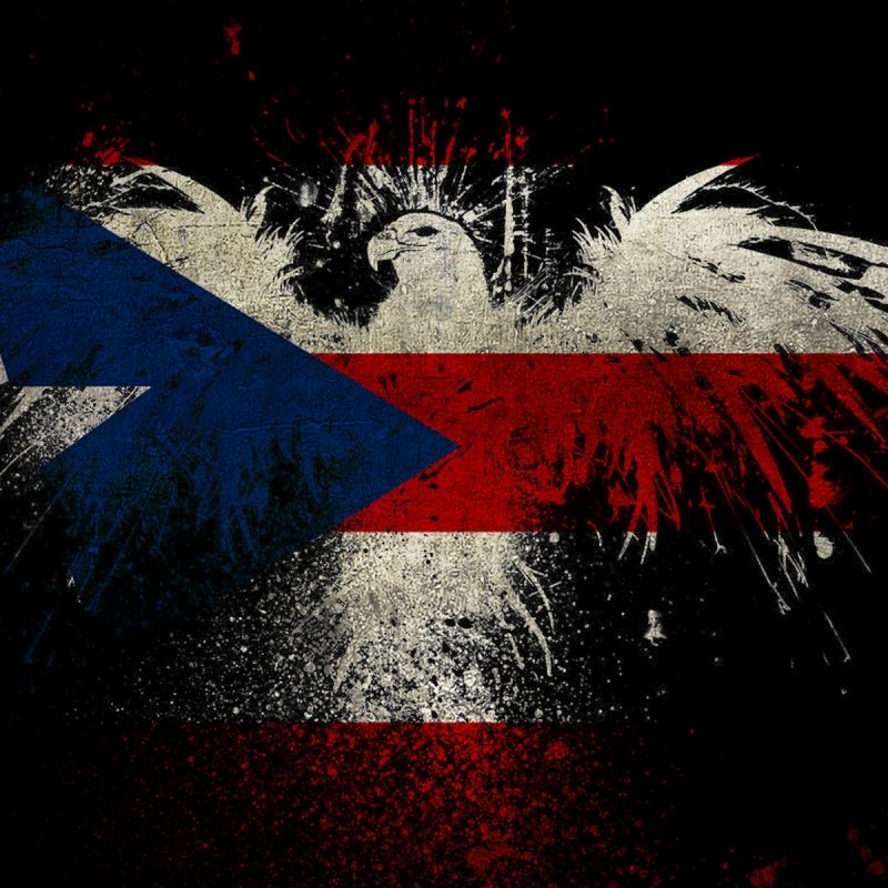 10 Latest Puerto Rican Flag Wallpapers FULL HD 1080p For PC Desktop 2018 free download eagle shaped puerto rico flag wallpaper 8530 800x800