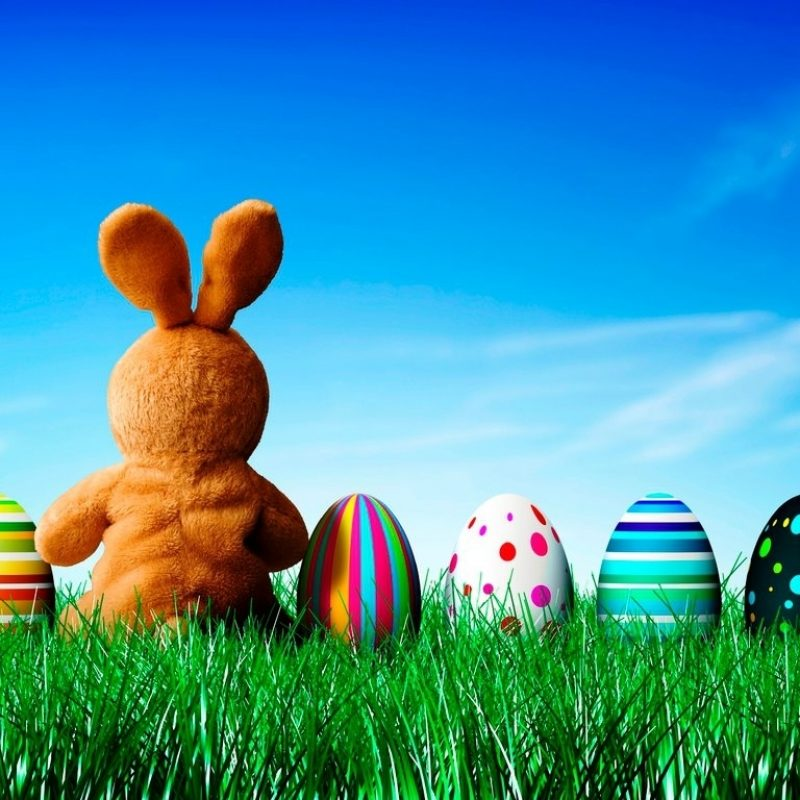 10 Most Popular Easter Bunny Wallpaper Backgrounds FULL HD 1920×1080 For PC Background 2018 free download easter bunny background hd wallpaper roominvite me wallpaper 800x800
