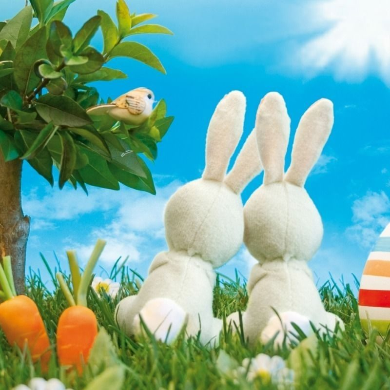 10 Top Happy Easter Wallpaper Hd FULL HD 1920×1080 For PC Desktop 2021 free download easter screensavers screen savers pinterest easter and easter 800x800