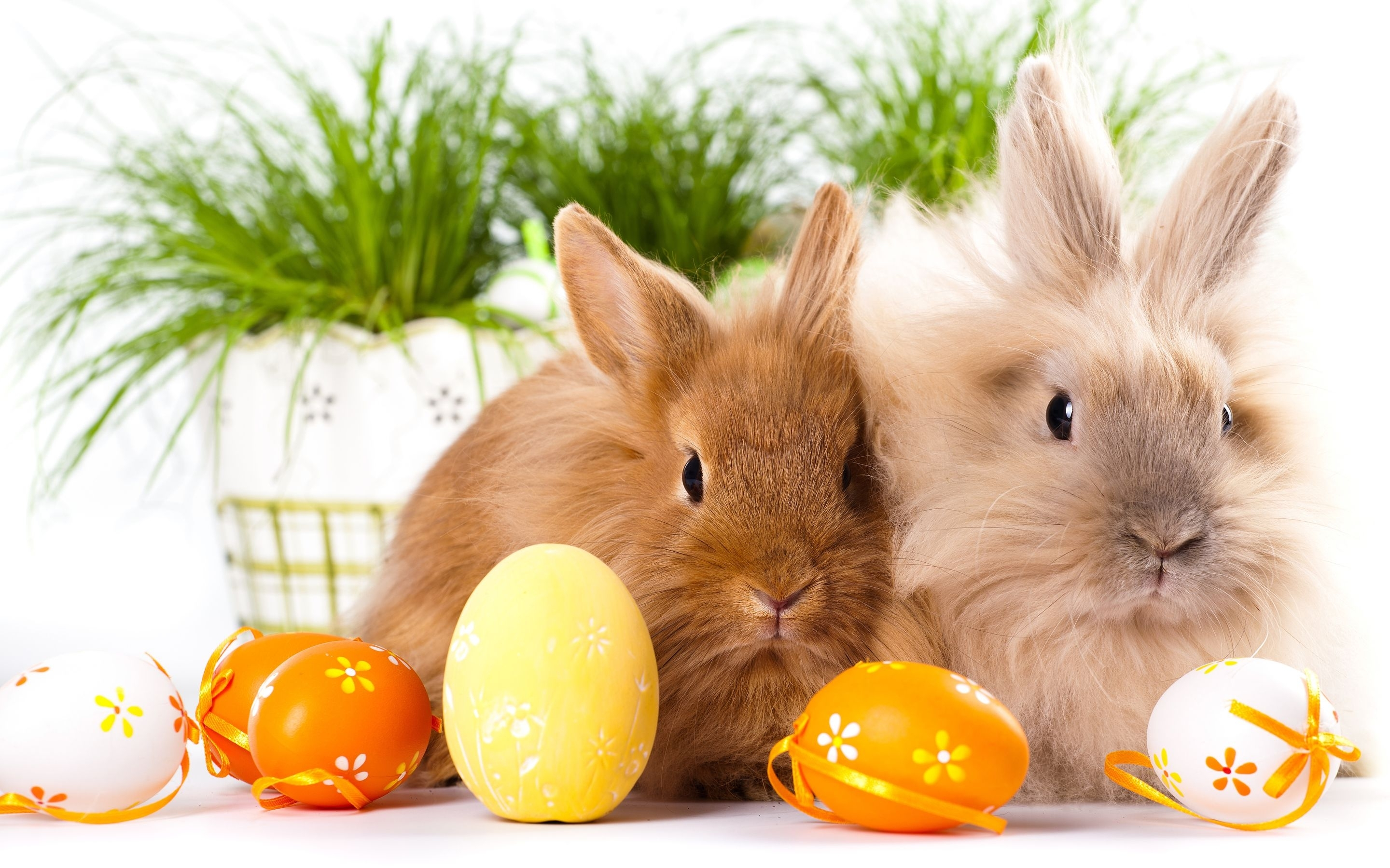 easter wallpapers free download | cute wallpapers for, elecrtonics