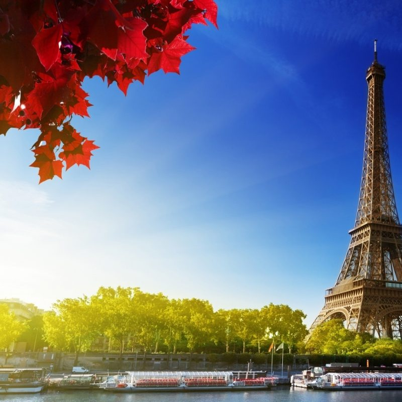 10 New Eiffel Tower Wallpaper Hd FULL HD 1920×1080 For PC Background 2021 free download eiffel tower e29da4 4k hd desktop wallpaper for 4k ultra hd tv e280a2 wide 800x800
