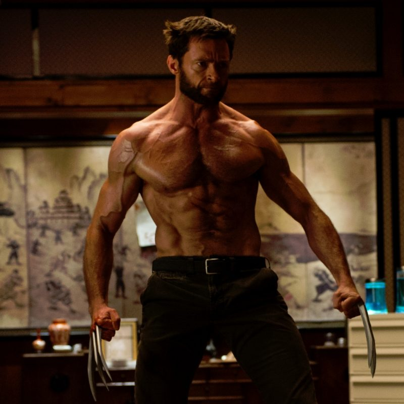 10 Best Wolverine Images Hugh Jackman FULL HD 1080p For PC Background 2020 free download en images wolverine quels acteurs voudrait on voir a la place de 800x800
