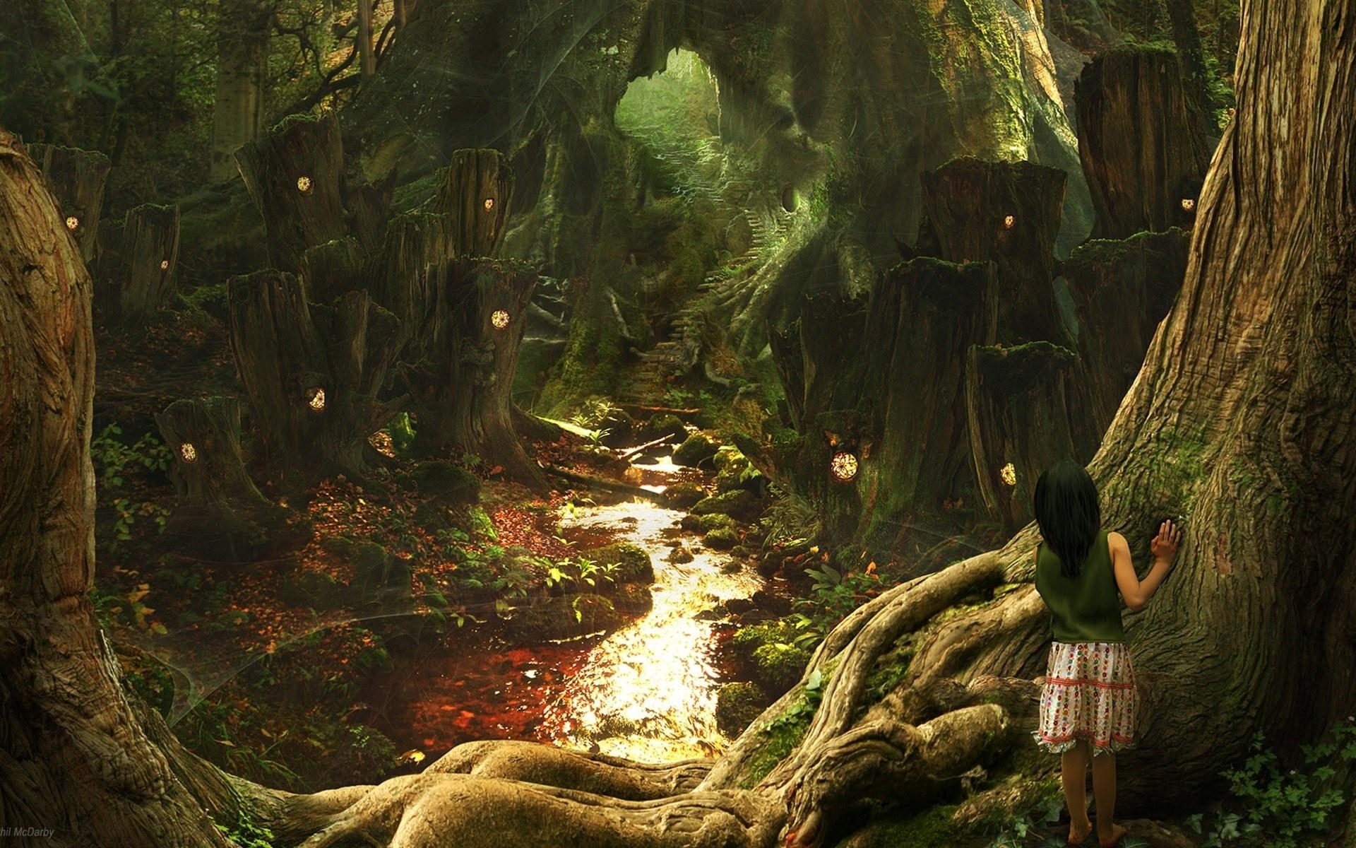 enchanted forest wallpapers hd | pixelstalk