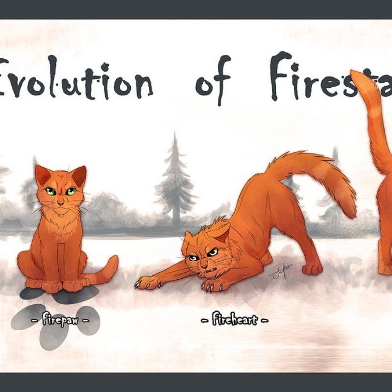 10 Most Popular Warrior Cats Wallpaper Firestar FULL HD 1080p For PC Background 2020 free download evolution of firestarambcatbone on deviantart 800x800
