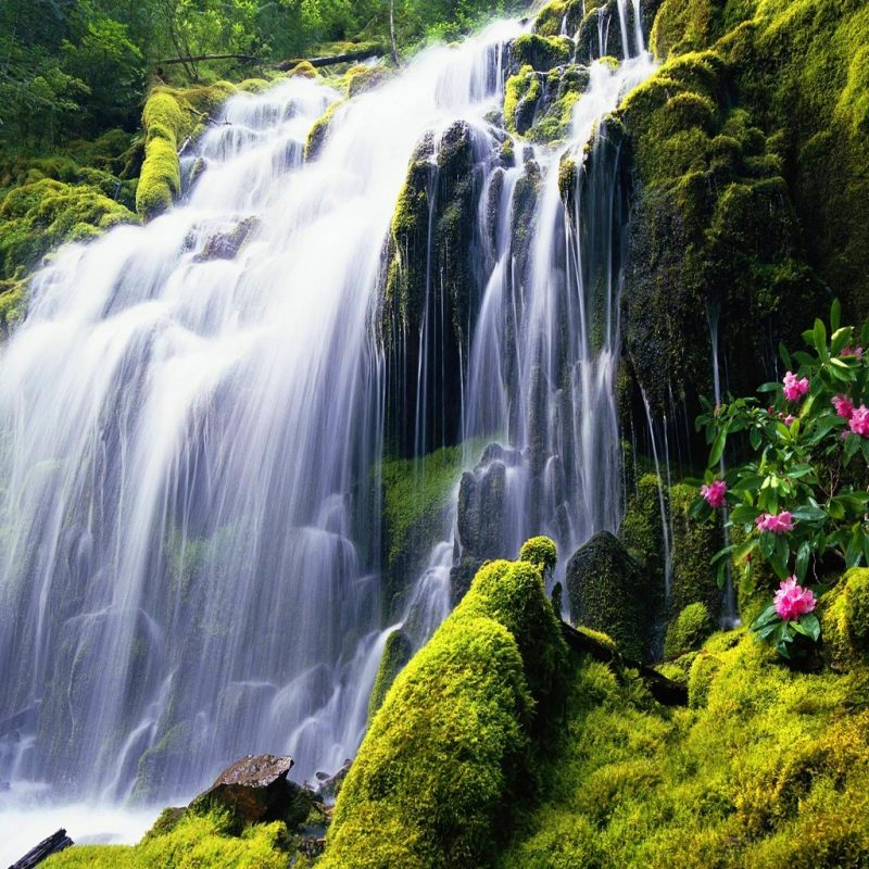 10 Best Waterfalls Wallpaper Free Download FULL HD 1920×1080 For PC Desktop 2021 free download exotic destinations around the world picture 20132306 funny 800x800
