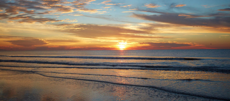 10 Latest Images Of Beach FULL HD 1080p For PC Desktop 2020 free download explore the best beaches of hilton head south carolina 800x351