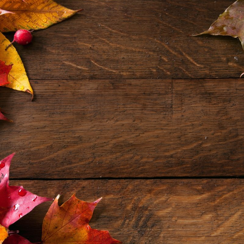 10 Best Fall Backgrounds For Pictures FULL HD 1080p For PC Background 2018 free download fall background pictures c2b7e291a0 800x800