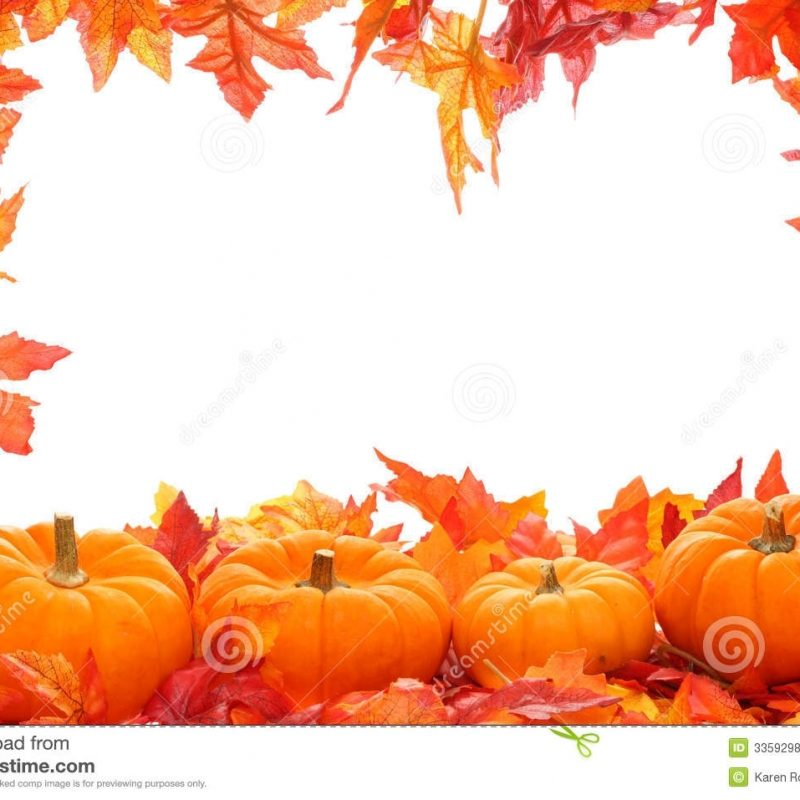 10 Top Free Fall Background Pictures FULL HD 1920×1080 For PC Background 2020 free download fall background stock photo image of leaf national autumn 3359298 800x800