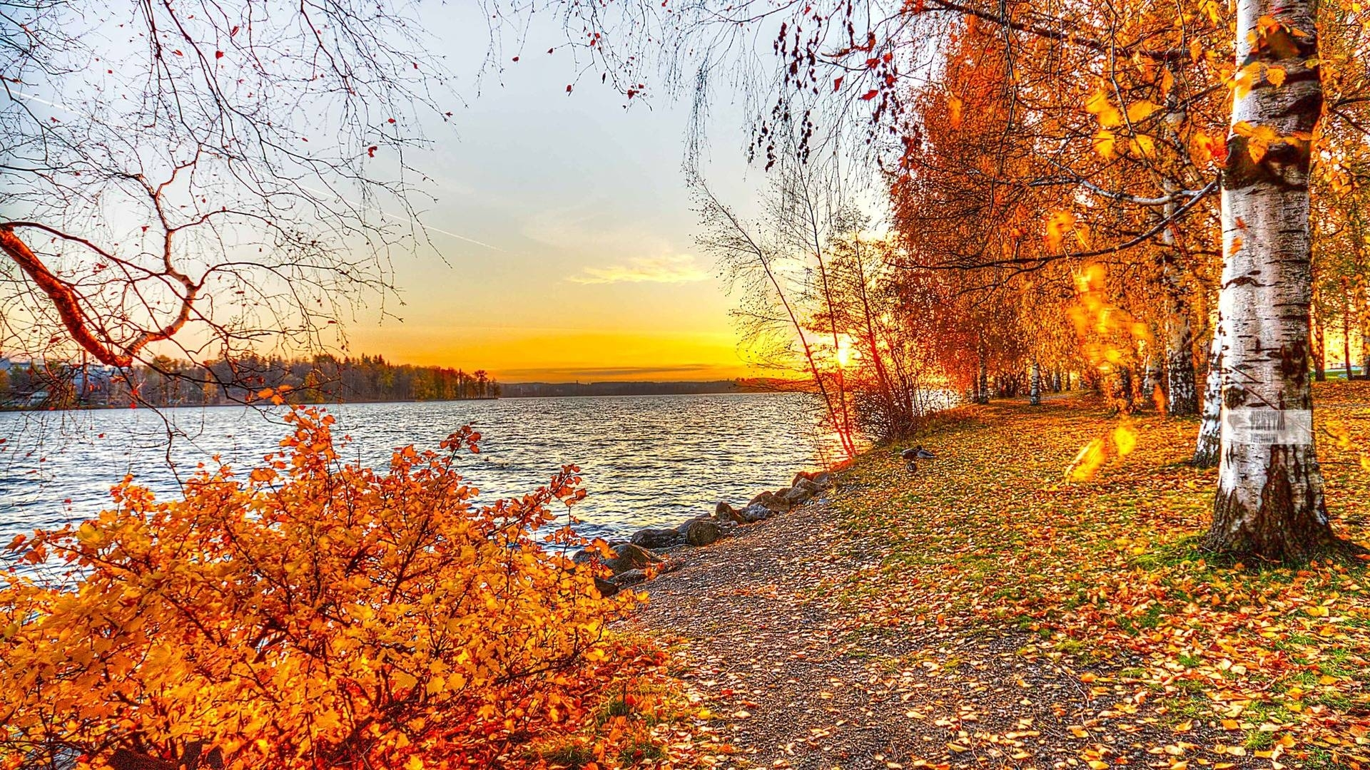 fall desktop photos hd wallpapers. - media file | pixelstalk