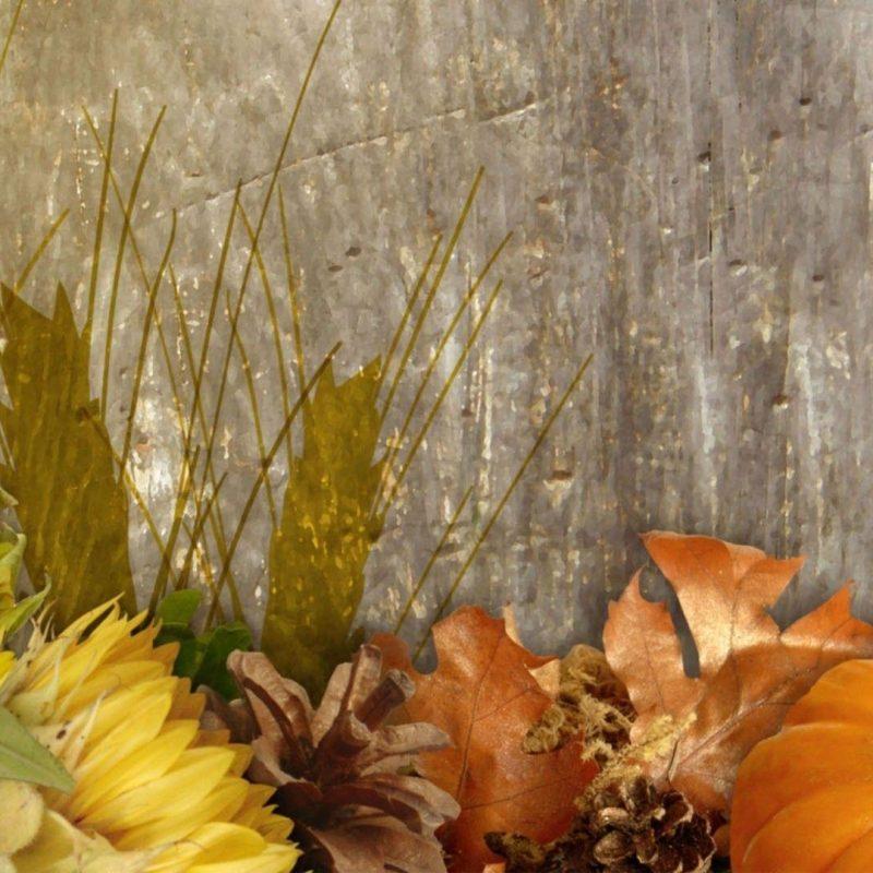 10 Top Fall Harvest Wallpaper Backgrounds FULL HD 1920×1080 For PC Background 2018 free download fall harvest wallpapers wallpaper cave 800x800
