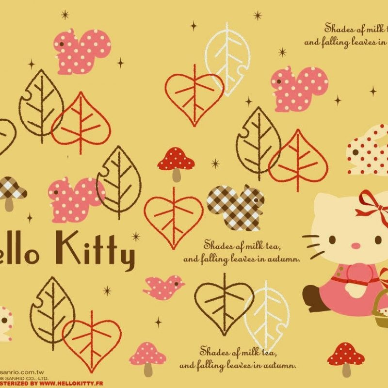 10 New Hello Kitty Fall Wallpaper FULL HD 1920×1080 For PC Background 2020 free download fall hello kitty wallpaper tianyihengfengfree download high 800x800