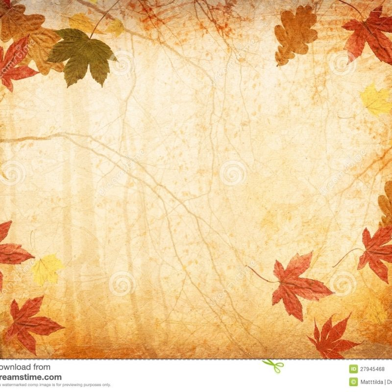 10 Latest Free Fall Background Images FULL HD 1080p For PC Desktop 2021 free download fall leaves wallpapers wallpaper 1920x1080 fall leaf backgrounds 34 800x800