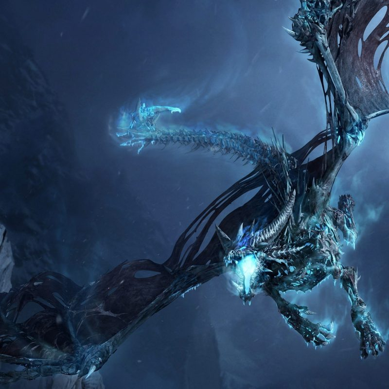 10 Top Black And Blue Dragon Wallpaper FULL HD 1920×1080 For PC Background 2021 free download fantasy blue dragon wallpaper 7007908 800x800
