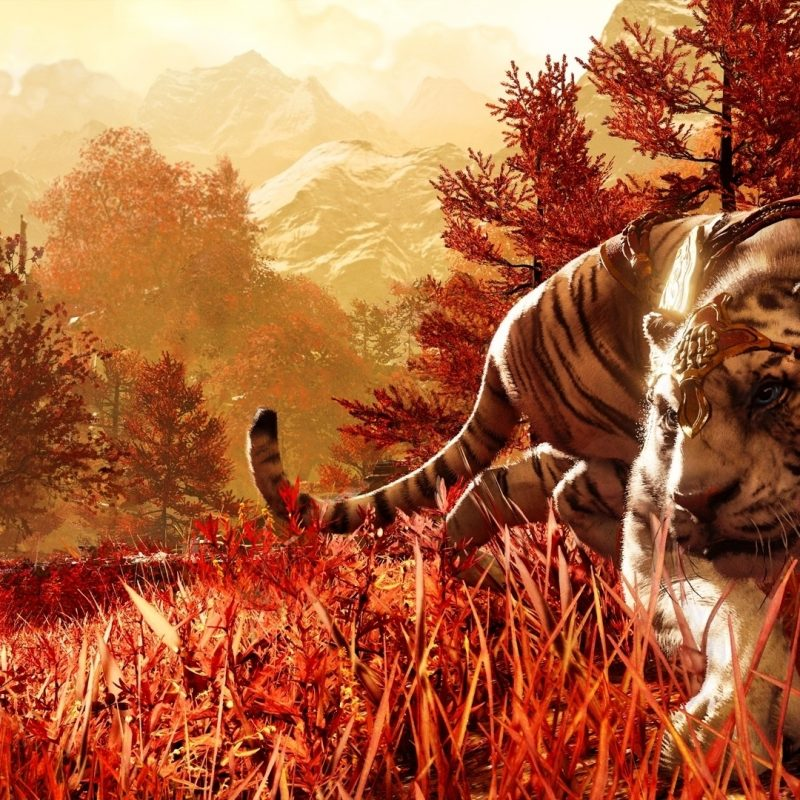 10 Best Far Cry 4 Wallpaper FULL HD 1080p For PC Background 2018 free download far cry 4 wallpaper google search far cry overload pinterest 800x800