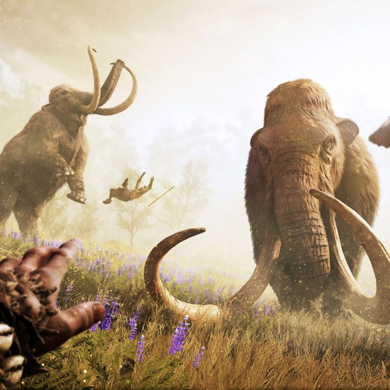 10 Most Popular Far Cry Primal Wallpaper FULL HD 1080p For PC Desktop 2021 free download far cry primal wallpaper mammouth jeux video 800x800