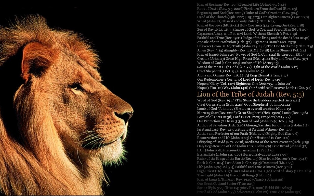 feeding on christ a biblical theology of the tribe of judah