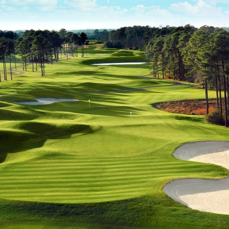 10 New Golf Course Desktop Wallpapers FULL HD 1080p For PC Background 2020 free download fields green golf course courses fields nature high quality picture 2 800x800
