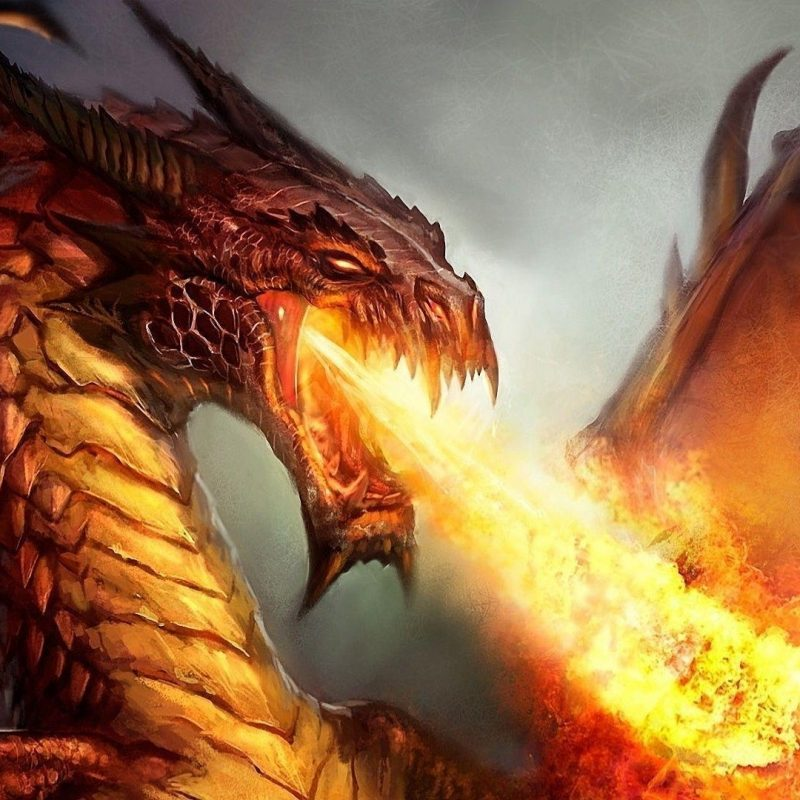 10 Top Fire Dragon Wallpapers 3D FULL HD 1920×1080 For PC Background 2018 free download fire dragon wallpapers wallpaper cave 800x800