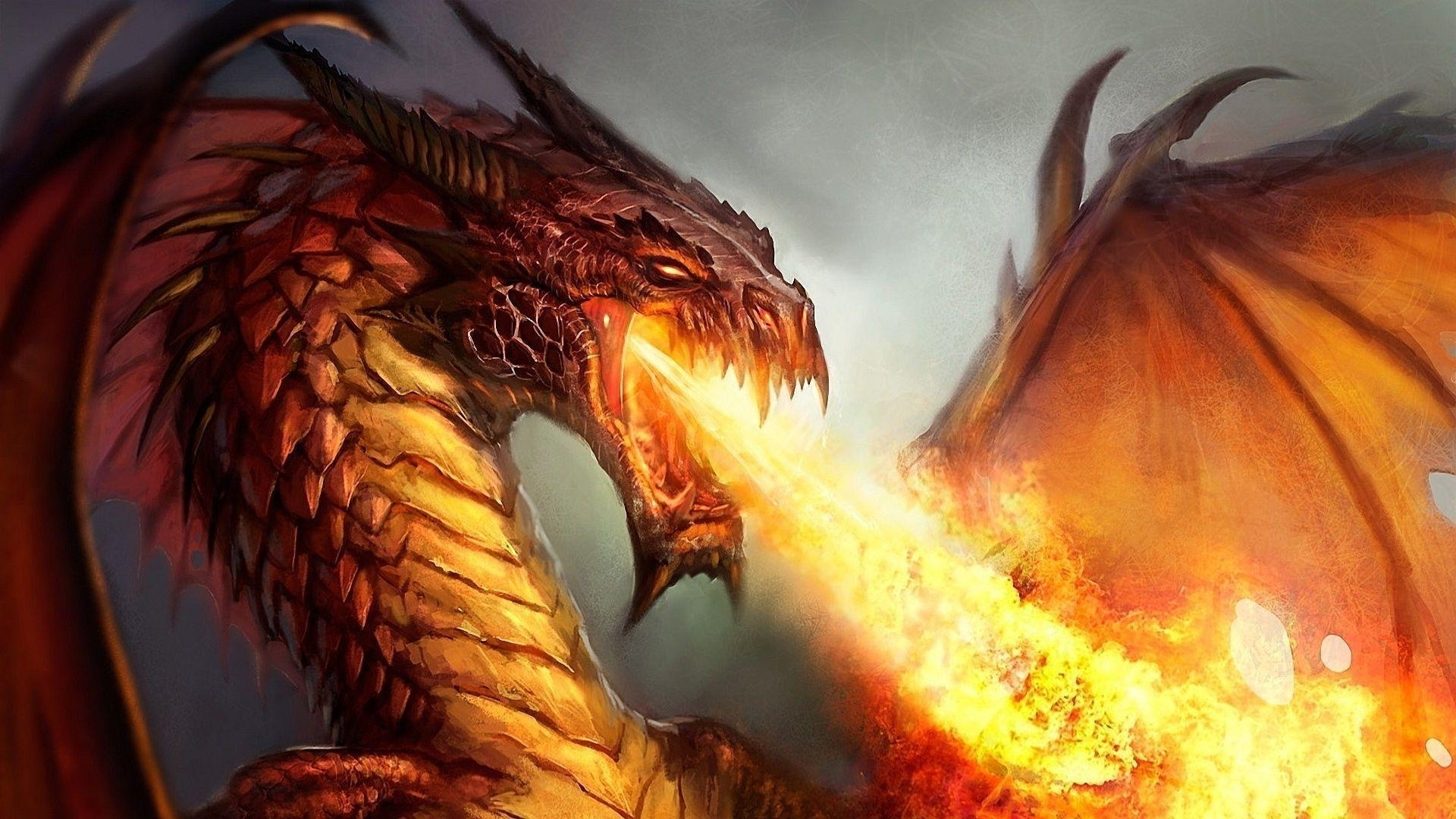 Title : fire dragon wallpapers – wallpaper cave. Dimension : 1920 x 1080. File Type : JPG/JPEG
