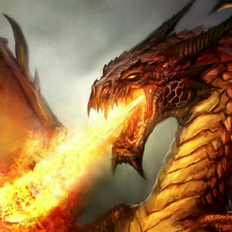 10 Top Fire Dragon Wallpapers 3D FULL HD 1920×1080 For PC Background 2018 free download firebreathing dragon wallpaper wallpaper studio 10 tens of 800x800