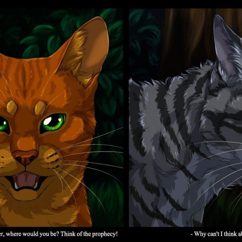 10 Most Popular Warrior Cats Wallpaper Firestar FULL HD 1080p For PC Background 2020 free download firestar and jayfeathervialir deviantart on deviantart 800x800