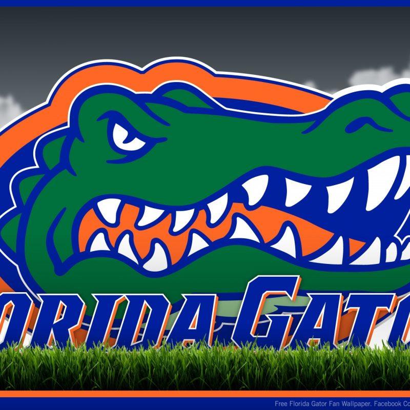 10 Best Florida Gators Desktop Wallpapers FULL HD 1920×1080 For PC Background 2020 free download florida gator screensavers and wallpaper 67 images 800x800