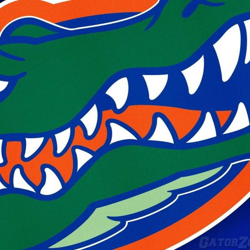 10 Best Florida Gators Desktop Wallpapers FULL HD 1920×1080 For PC Background 2020 free download florida gators wallpaper 4k desktop hd pics for pc wallvie 800x800