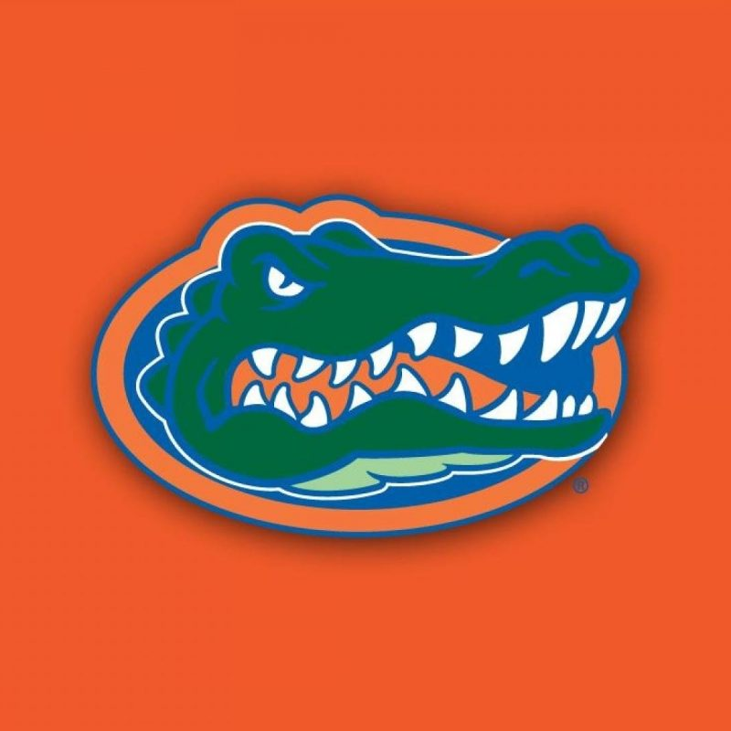 10 Best Florida Gators Desktop Wallpapers FULL HD 1920×1080 For PC Background 2020 free download florida gators wallpaper hd wallpaper wiki 800x800