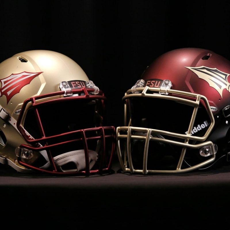 10 Top Florida State Seminoles Wallpaper FULL HD 1080p For PC Background 2018 free download florida state seminoles desktop wallpaper hd high quality of pc 1 800x800